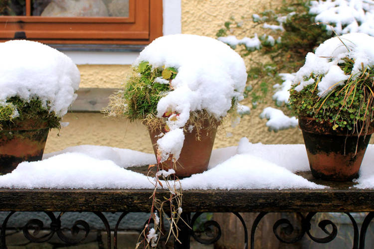 Winterize Your Deck in 3 Easy Steps