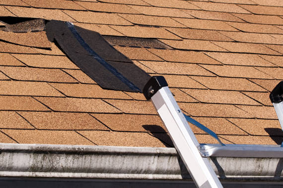4 Telltale Signs of a Damaged Roof