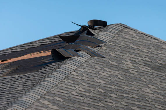 The Causes of A Water Damaged Roof
