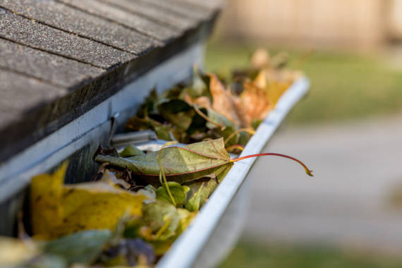 Your Annual Roof Maintenance Checklist for Springtime
